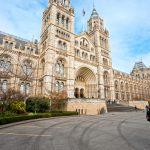 Free museums in South Kensington