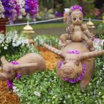Attend the RHS Chelsea Flower Show 2017