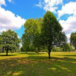 The best city parks for a summer's day in London